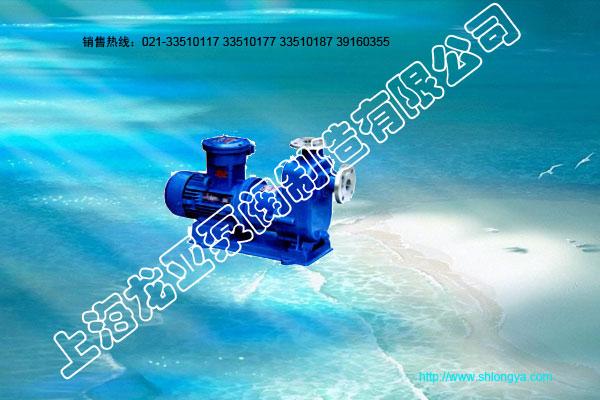 ZCQ型磁力驱动泵,自吸式磁力驱动泵